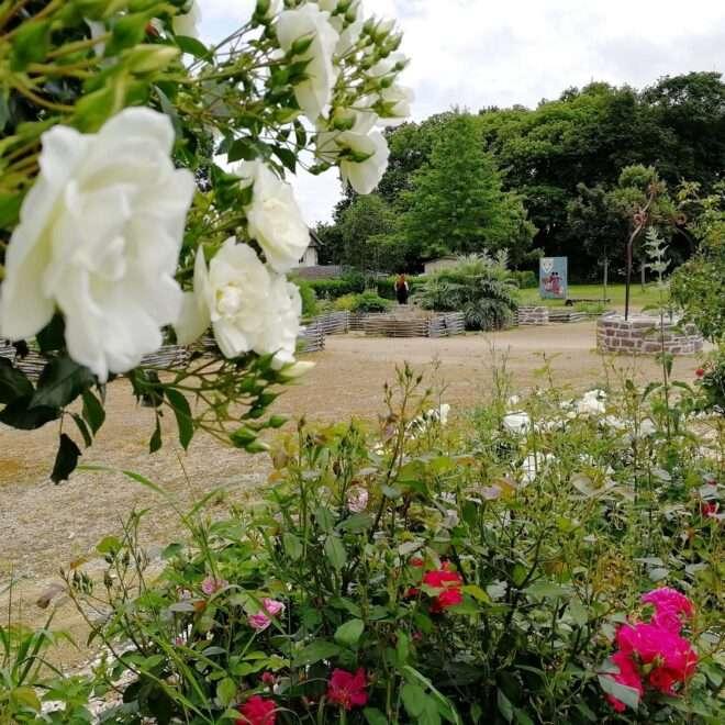 Bédée Village étape - Jardin médiéval