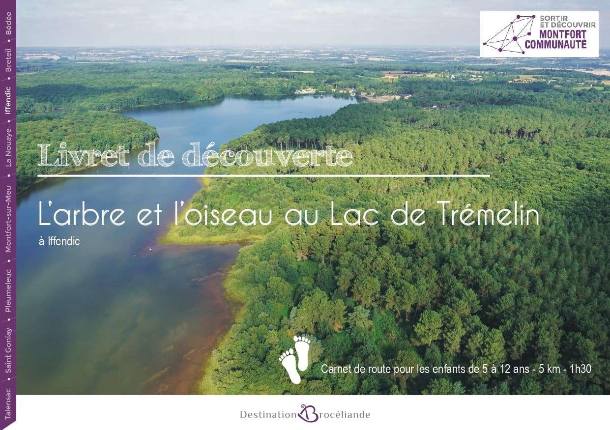 L'arbre et l'oiseau - Lac de Trémelin (1)-min