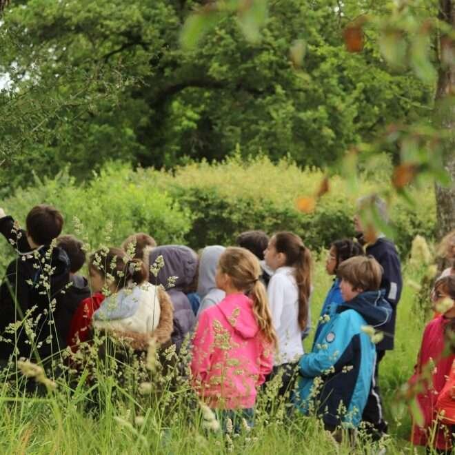 Visites et médiation – centres de loisirs et groupes scolaires