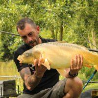 La carpe, poisson roi d'eau douce Lac de Trémelin