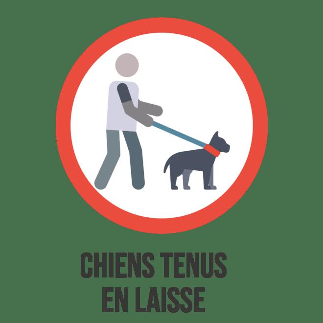 Logo bonnes pratiques Trémelin (3)-min