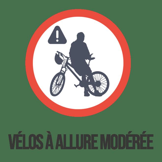 Logo bonnes pratiques Trémelin (8)-min